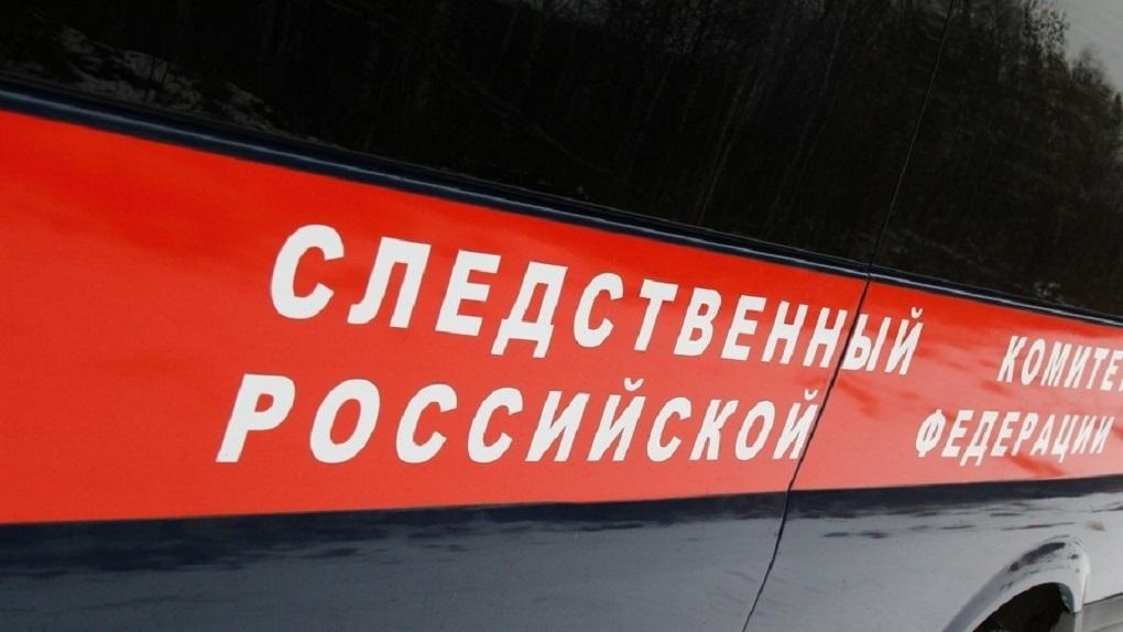 Вдетском саду Екатеринбурга работала воспитательница-неуч