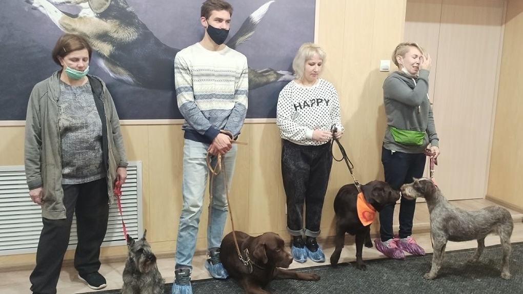 Пушистые терапевты проекта «Волонтер – это звучит гордо!» провели практическое занятие в Первоуральске