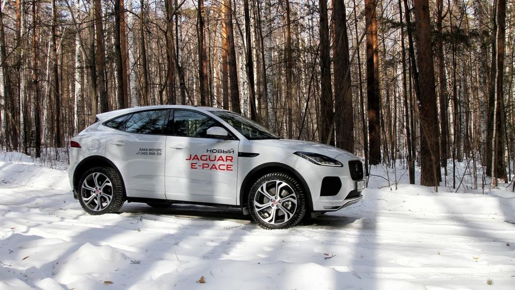 Выживет ли котенок в лесу: тест-драйв Jaguar E-Pace (2018)