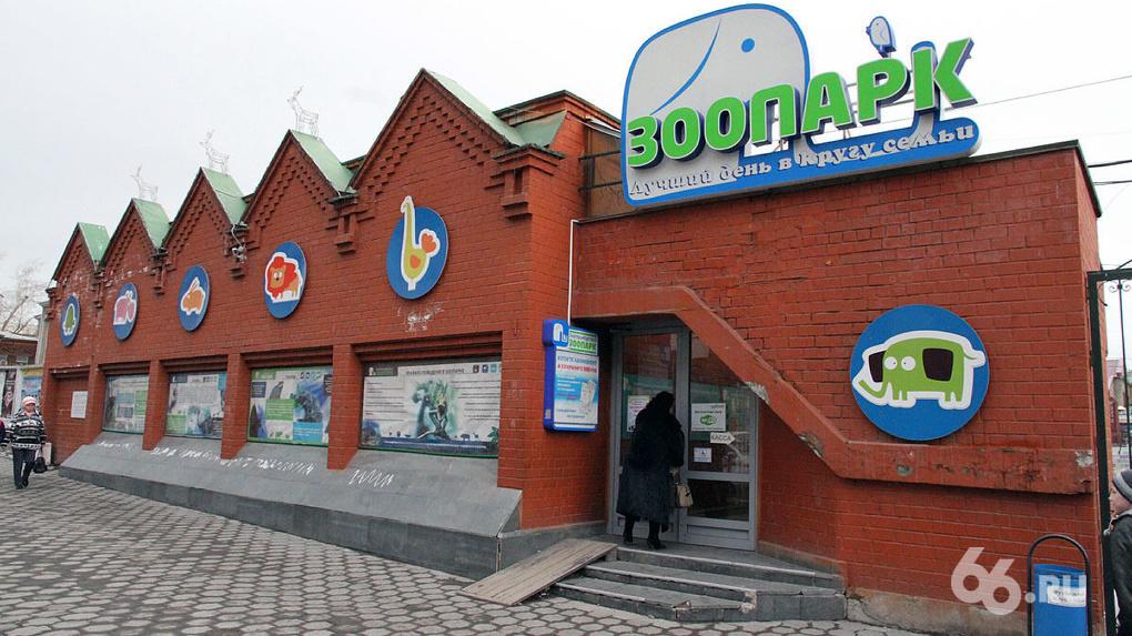 В Екатеринбургском зоопарке отреагировали на идею переехать в Сысерть